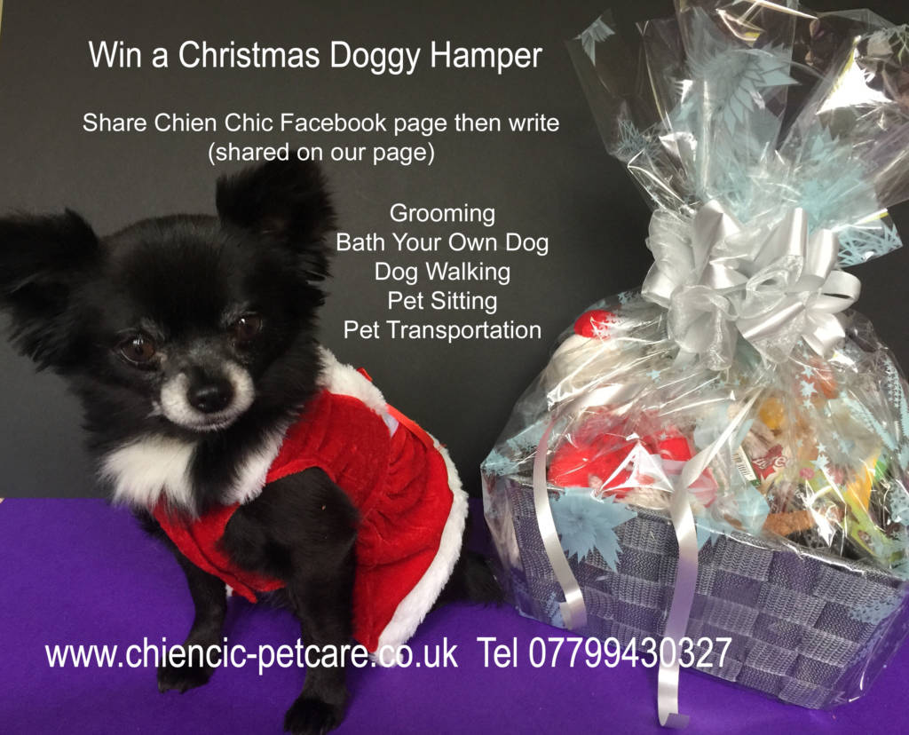 win xmas hamper