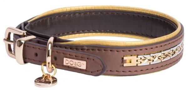 brown gold collar dog